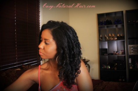 Flexi Rods On Natural Hair Left side