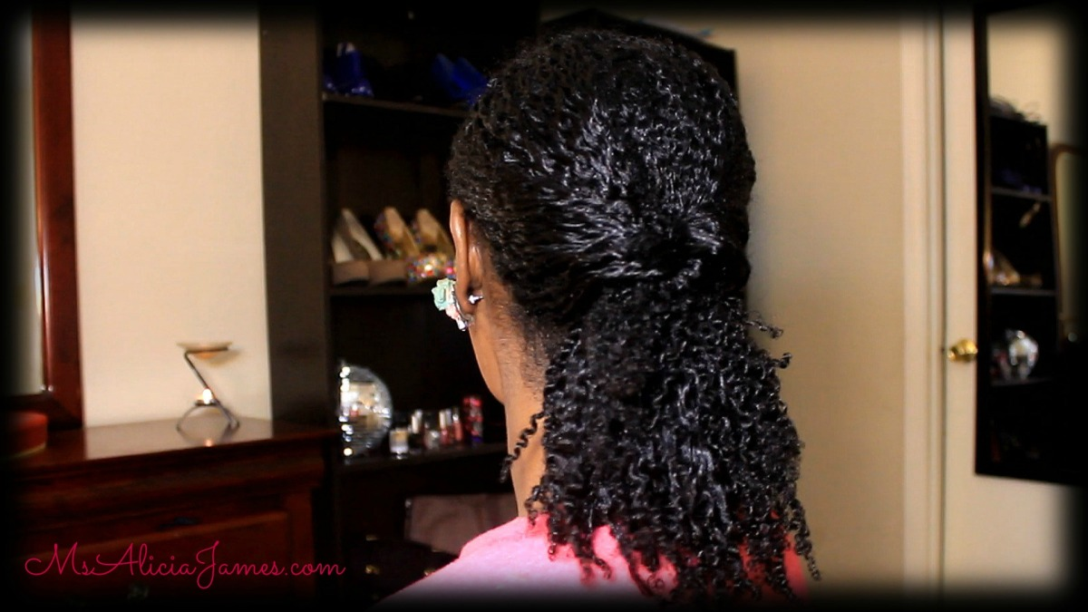 Easy Ponytail With A Twist On My Natural Hair